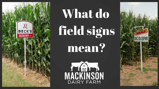 What do field signs mean?