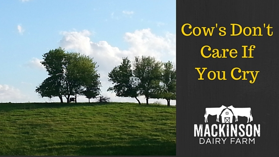 Heather's Story – Cow's Don't Care if You Cry