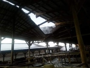 lisa's blog - roof collapse 2