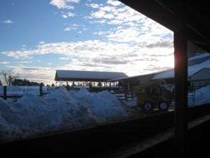 lisa's blog - snow piles 2