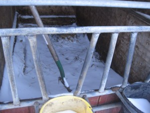 lisa's blog - snowy calf condo