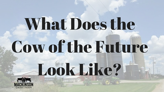 What Does the Cow of the Future Look Like?